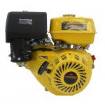 Petrol Engine OHV Interpower 168FB V